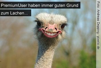 Premium-User haben immer guten Grund zum Lachen:-)