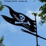 Piratenpartei wechselt Farbe