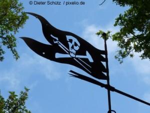 alte Flagge der Piratenpartei