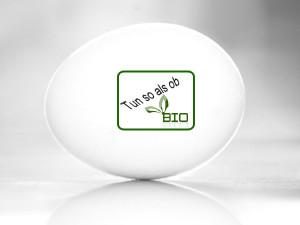 das fast Bio-Ei